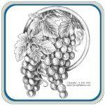 Oak, Grape & Fruit