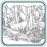 Mule Deer and White Tail Deer Pattern Package