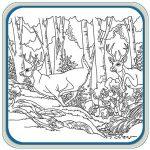 Mule Deer and White Tail Deer Pattern Package