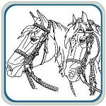Western Horses Scene Mantel Pattern Package