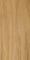 butternut carving wood